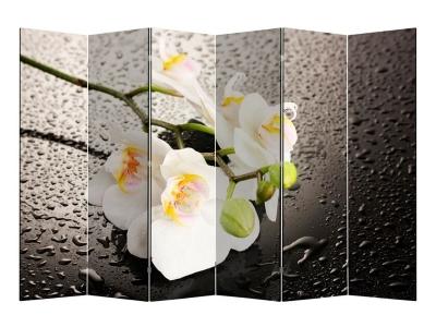 Ширма 1111-6 Белая орхидея и капли 6 панелей