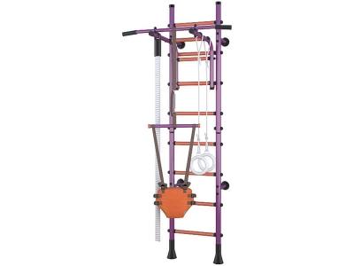Детский спортивный комплекс Polini Sport Turbo пристенный, фиолетовый