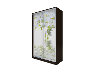 Шкаф-купе Хит 2-х дверный Орхидея Венге аруба