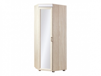 Шкаф для одежды Йорк ЙО-04.2-ШК 502х2177х523